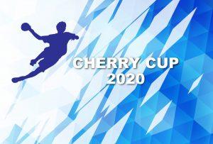 チェリーカップ第28回東日本小学生ハンドボール大会